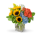 Fun in the Sun in Huntington IN, Town & Country Flowers & Gifts