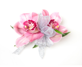 Double Cymbidium Orchid Wrist Corsage in Little Rock AR, Tipton & Hurst, Inc.