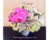 BGF6374 in Buffalo Grove IL, Blooming Grove Flowers & Gifts