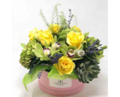 Spring Yellows - Boxed Floral Collection in Washington DC, Greenworks