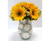 Sunny Days in Frisco TX, Patti Ann's Flowers