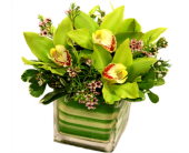 Gracious Greens in Orlando FL, Windermere Flowers & Gifts