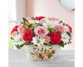 Blooms and Butterflies in Lansdale PA, Genuardi Florist