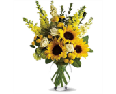 Here Comes the Sun by Teleflora in Oviedo FL, Oviedo Florist