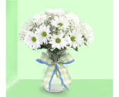 Summer Daisy Delight  in Southfield MI, Thrifty Florist