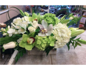 Thinking of You with Love in Toronto ON, Verdi Florist