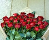 24 Red Roses Wrapped in Toronto ON, The Flower Nook