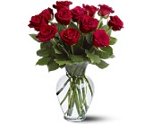 12 Red Roses in San Jose CA, Rosies & Posies Downtown