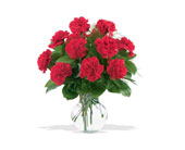 12 Red Carnations in Muskegon MI, Barry's Flower Shop