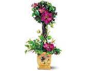 Teleflora's Lena Liu Hummingbird Topiary in New Britain CT, Weber's Nursery & Florist, Inc.