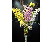 Cymbidium Orchid Vase Arrangement in New York NY, Fellan Florists Floral Galleria