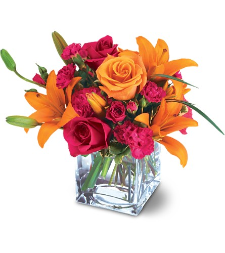 Teleflora's Uniquely Chic Bouquet in Hollywood FL, Al's Florist & Gifts