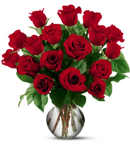 18 Red Roses in Fort Worth TX, TCU Florist