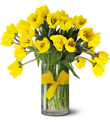 Teleflora's Sunny Yellow Tulips - Premium in Salt Lake City UT, Especially For You