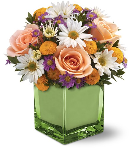 Teleflora's Spring Spirit Bouquet in Broomall PA, Leary's Florist