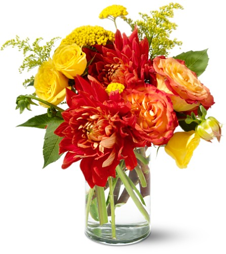 Teleflora's Dazzling Dahlias in Menomonee Falls WI, Bank of Flowers