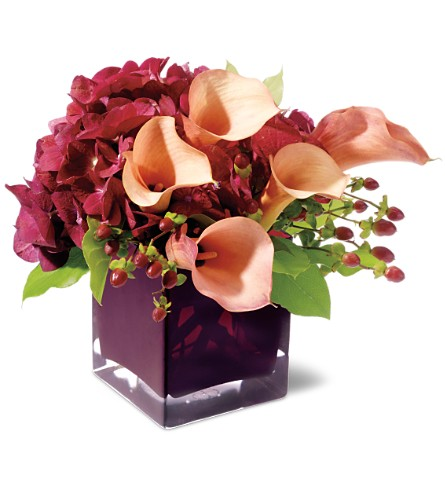 Teleflora's Calla Classique in Oklahoma City OK, Array of Flowers & Gifts