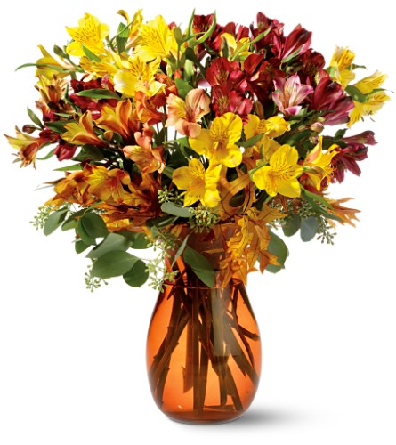 Alstroemeria Brights in Oklahoma City OK, Array of Flowers & Gifts