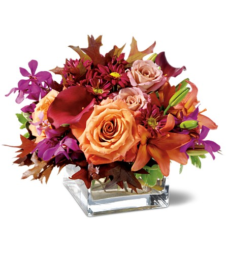 Rose Orchid Blush in New York NY, New York Best Florist