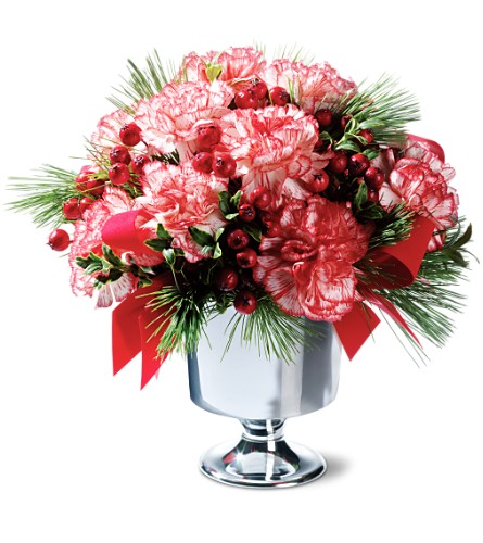 Peppermint Carnations in Prince George BC, Prince George Florists Ltd.