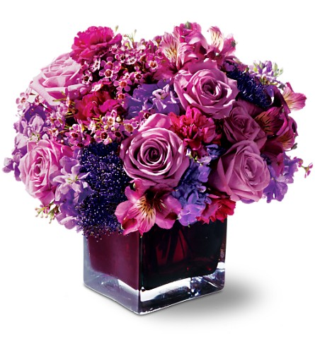 Teleflora's Plum Paradise in Metairie LA, Nosegay's Bouquet Boutique