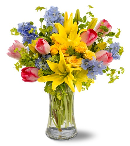 Spring Delight in Laurel MD, Rainbow Florist & Delectables, Inc.