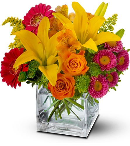 Teleflora's Summertime Splash in DeKalb IL, Glidden Campus Florist & Greenhouse