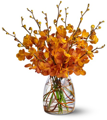Orchid Embers in Friendswood TX, Lary's Florist & Designs LLC