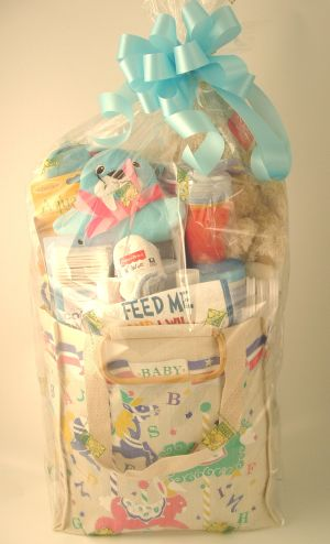 Baby Boy Gift Bag in Salisbury MD, Kitty's Flowers