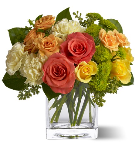 Teleflora's Citrus Splash in DeKalb IL, Glidden Campus Florist & Greenhouse