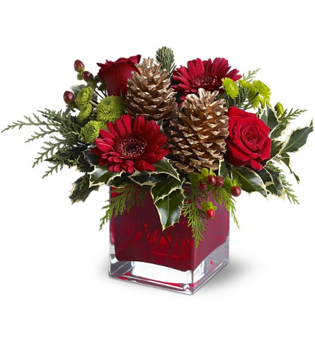Teleflora's Cozy Christmas in Naples FL, Gene's 5th Ave Florist