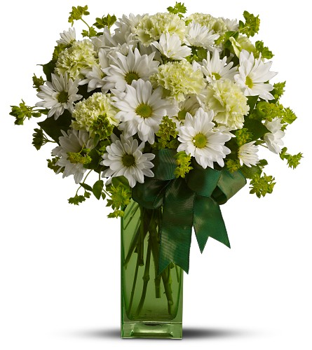 St. Patrick's Day-zies by Teleflora in usa-send-flowers NJ, Stanley's America's Florist & Gifts
