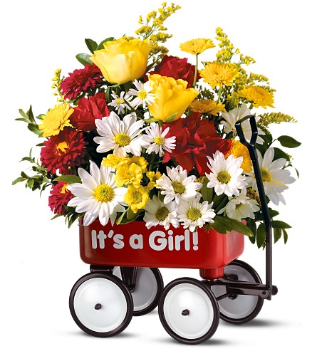Teleflora's Baby's First Wagon - Girl in Jersey City NJ, Entenmann's Florist