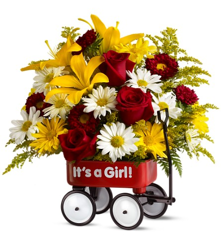 Teleflora's Baby's First Wagon - Girl - Deluxe in Houston TX, Village Greenery & Flowers