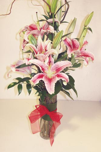 Stunning Stargazers in Naples FL, Gene's 5th Ave Florist
