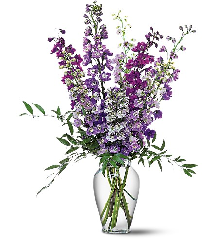 Delphinium Dreams in Sayville NY, Sayville Flowers Inc
