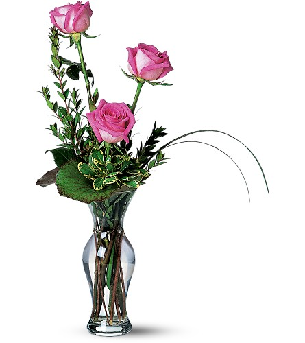 Tender Trio in Naples FL, Gene's 5th Ave Florist