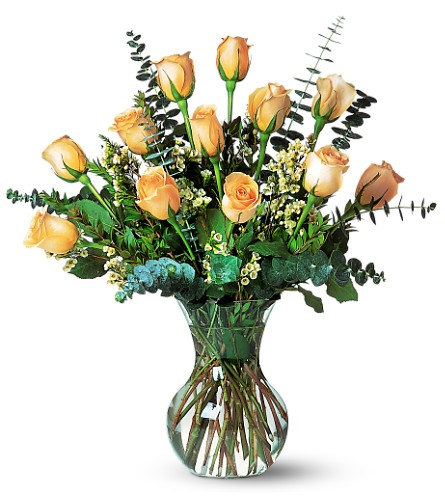 A Dozen Pale Peach Roses in Hollywood FL, Al's Florist & Gifts
