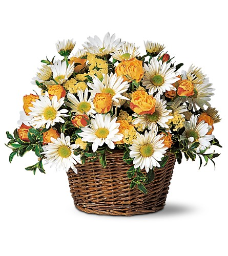 Joyful Roses and Daisies in Sayville NY, Sayville Flowers Inc