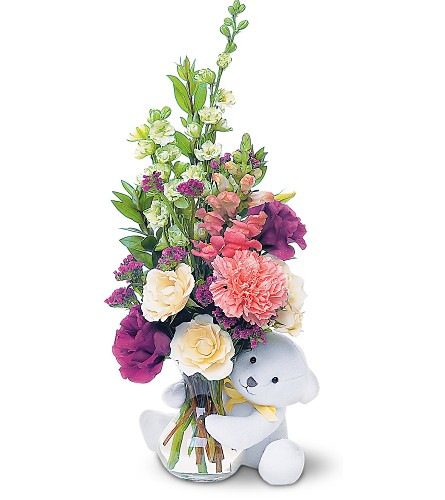 Teleflora's Bear Hug Bear with White Roses in Fredonia NY, Fresh & Fancy Flowers & Gifts