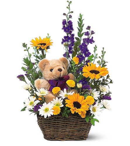 Basket & Bear Arrangement in Oklahoma City OK, Array of Flowers & Gifts