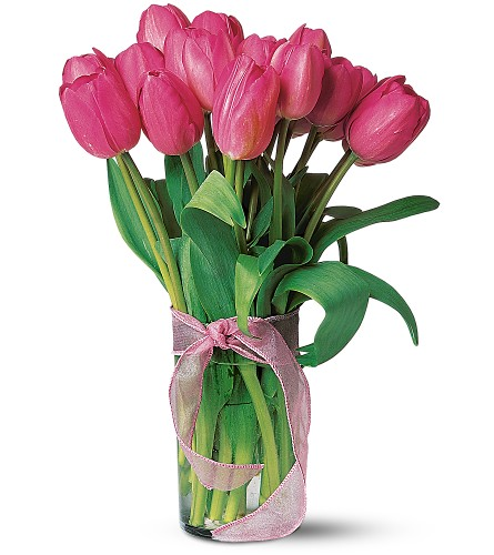 Pink Tulips in South Hadley MA, Carey's Flowers, Inc.