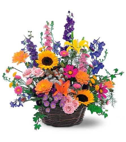 Summertime Sensation Basket in Rochester NY, Fabulous Flowers and Gifts