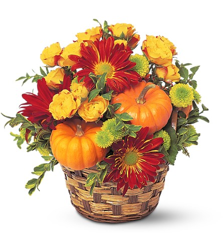 Hint of Fall in Weymouth MA, Bra Wey Florist
