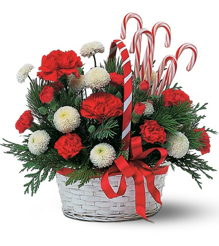 Candy Cane Basket in Royersford PA, Three Peas In A Pod Florist