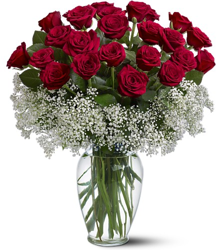 Field of Roses in Hollywood FL, Al's Florist & Gifts