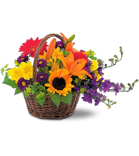 Basket of Blooms in Orlando FL, Orlando Florist