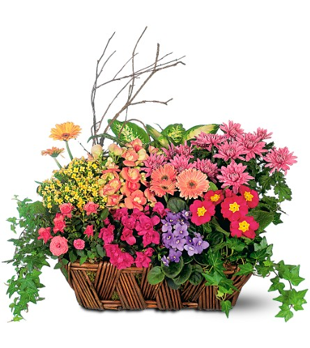 Deluxe European Garden Basket in Laurel MD, Rainbow Florist & Delectables, Inc.