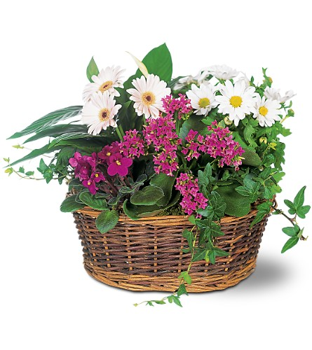 Traditional European Garden Basket in Abington MA, The Hutcheon's Flower Co, Inc.