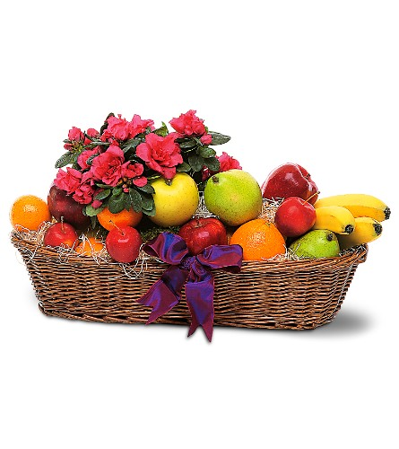 Plant and Fruit Basket in Knoxville TN, The Flower Pot